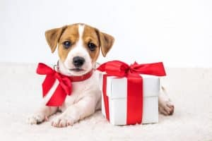 """It Was a Gift!"" Understanding Asset Division in Tennessee Divorce"